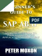 Beginner's Guide.pdf