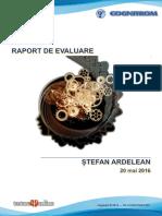 Raport de Evaluare Cu Scop de Consiliere in Cariera