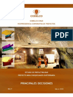 informe_principales_decisiones_rev_p_25_03_2009.pdf
