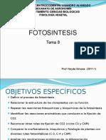 fotosintesis2011-1