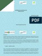 Informe Monterrey 2016