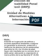Dirección de Responsabilidad Penal Juvenil (DRPJ)