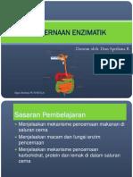 Pencernaan Enzimatik Dr.dian
