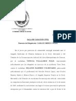 Condiciones Necesarias Para La Validez de Escritos y Diligencias Consignadas Ante Un Tribunal