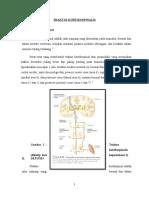 202097634 Refarat Traktus Kortikospinalis