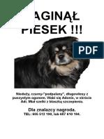 ZAGINĄŁ.rtf