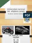 Universidad Nacional Del Altiplano Unap