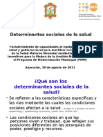 Determinantes Sociales de La Salud_Pedro M.