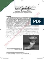 Trigo e Hidalgo 2009 RAE.pdf