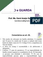 Prática Jurídica II - Adoção e Guarda.