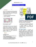 Hipertiroidismo Rm Plus Medic A