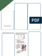 documents.tips_leaflet-gizi-bayi-balita.docx