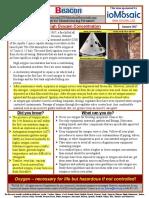 Process Safety Beacon
