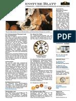 Schamanismus und Esoterik - Schamanismus Zeitung