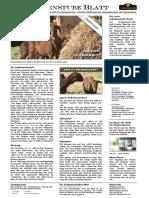 schamanenstube-blatt-2015.11.16.pdf