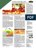 schamanenstube-blatt-2015.11.30.pdf