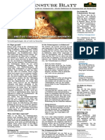 schamanenstube-blatt-2016.02.08.pdf