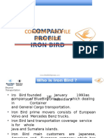 Profile Iron Bird Logistic 2014