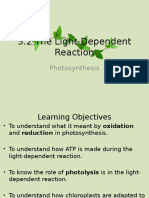 Light-Dependent Reaction