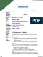 171679619-Biomecanica-de-Cadera.pdf