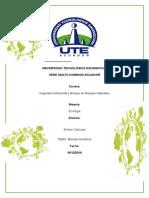 Consulta de Biomas Terrestres Evelyn Cabezas