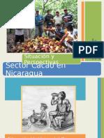 7 Oportunidades Mercado Exportar Cacao Colombiano-A Ramos Proexport
