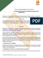 Convocatoria Orange Tulip Scholarship 2017-2018