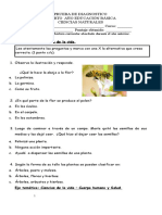 Diagnóstico Cs. Naturales 4º