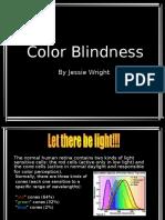 Color Blindness.ppt