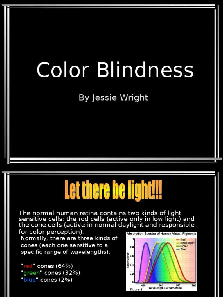 color blindness ppt visual system color