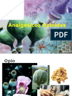 Analgesic Os Opioid Es