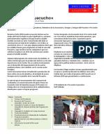 Aya2010_span.pdf