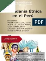 Ciudadanía Étnica en El Perú