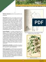 Pata de Vaca.pdf