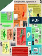 BERUANG_MADU_XP(2).pdf