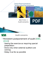 Audit Related Concerns