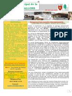 pdf-Bulletin-municipal-de-la-commune-d'Allons