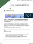2-entorno.pdf