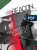 Beacon 2010 No 196