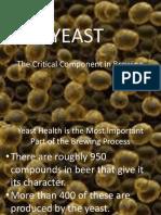 Yeast-2008-09