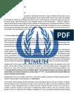 PUMUN Sample Paper