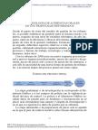 9. VI Metodologia de Audiencias Orales