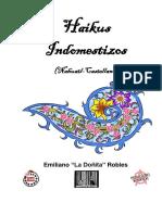 238664673-Haikus-Indomestizos-Nahuatl.pdf