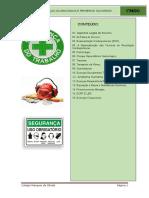 Apostila Doenças Ocupacionais PS Pronta (1)
