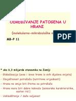 određivanje_patogena