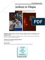 Biosecurity_Pub158 Francellosis en tilapia.pdf