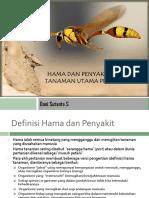 Hama Dan Penyakit Penting Tanaman Utama Perkebunan