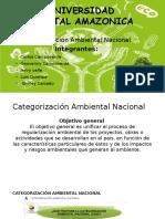 Categorizacion de la Gestion Ambiental