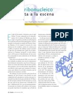 07-ARN.pdf