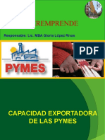 CAPACIDAD EXPORTADORA DE LAS PYMES